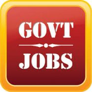 Why government jobs considered secure choice for employment?